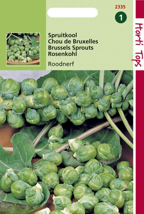 Hortitops Zaden - Spruitkool Roodnerf