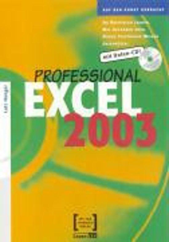 Excel 2003 Professional