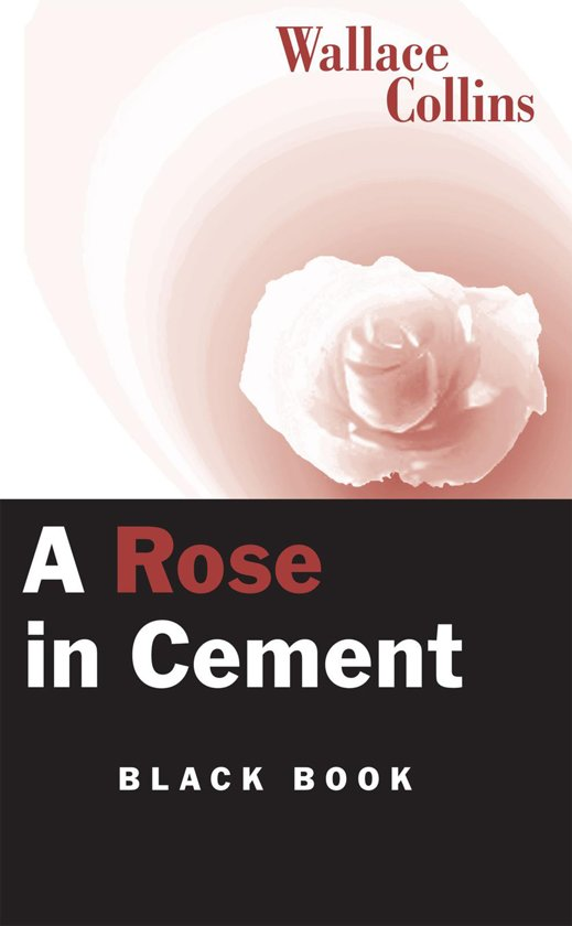 A Rose in Cement