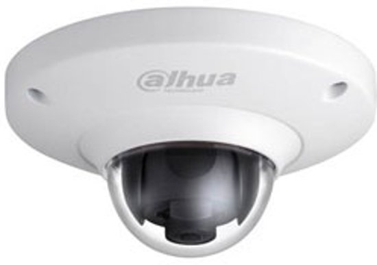 Dahua IPC-EB5400P vandalismebestendige 4MP Full HD Fisheye dome IP camera