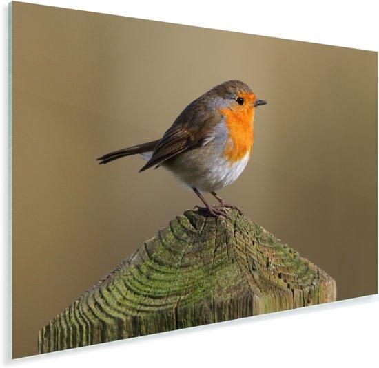 Roodborst op een houten paaltje Plexiglas 180x120 cm - Foto print op Glas (Plexiglas wanddecoratie) XXL / Groot formaat!