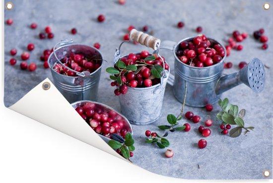 Tuingereedschap gevuld cranberry's Tuinposter 60x40 cm - klein - Tuindoek / Buitencanvas / Schilderijen voor buiten (tuin decoratie)