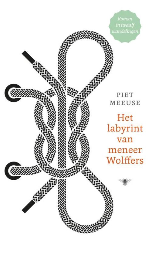 Het labyrint van meneer Wolffers