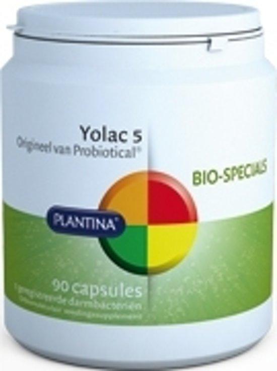 Plantina Yolac