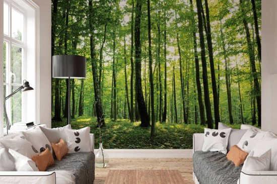 Fotobehang Zomer Bos - 368x254 cm (bxh) - 4 stroken behang