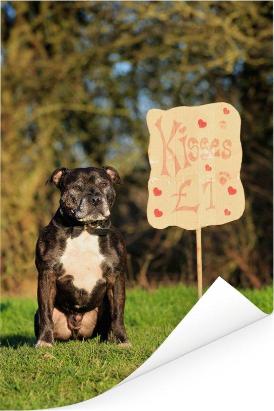 Staffordshire Bull Terrier bij een valentijn bord Poster 80x120 cm - Foto print op Poster (wanddecoratie woonkamer / slaapkamer) / Huisdieren Poster