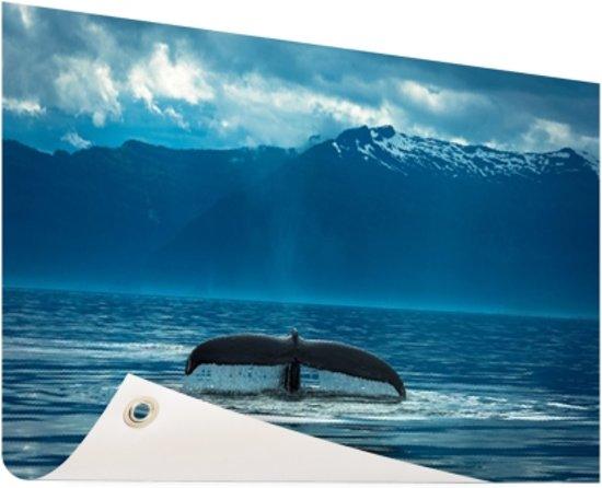 Staart van een grote bultrug walvis Tuinposter 60x40 cm - klein - Tuindoek / Buitencanvas / Schilderijen voor buiten (tuin decoratie)