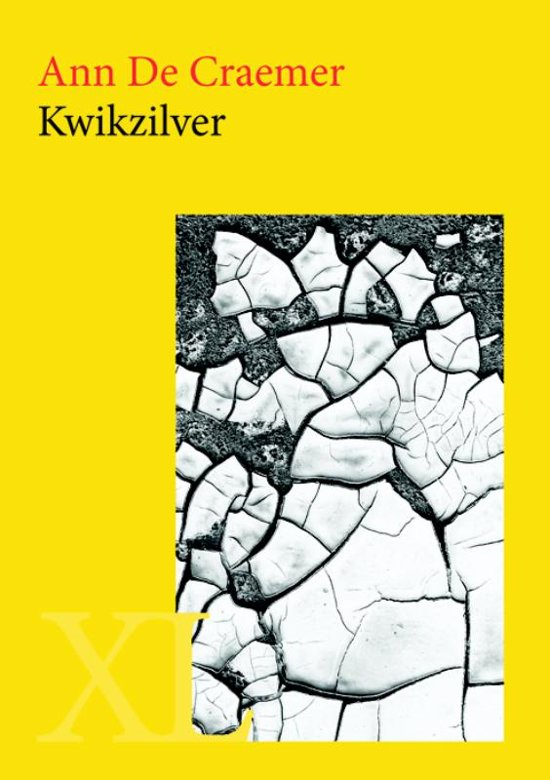 Kwikzilver - grote letter uitgave