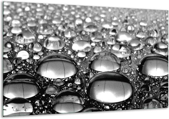 Glas schilderij Macro | Grijs, Zwart, Zilver | 120x70cm 1Luik | Foto print op Glas |  F006501