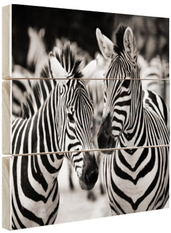 Zebra zwart wit Hout 30x20 cm - Foto print op Hout (Wanddecoratie)