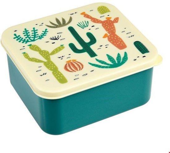 Rex International Desert In Bloom Lunch box