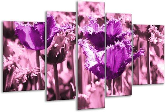 Glasschilderij Tulp | Paars, Wit, Zwart | 170x100cm 5Luik | Foto print op Glas |  F003889
