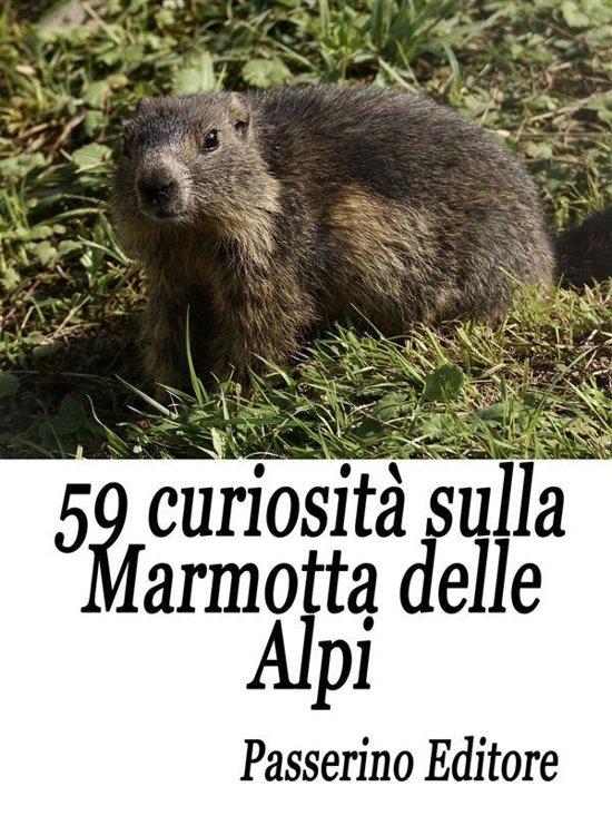 59 curiosità sulla marmotta delle Alpi