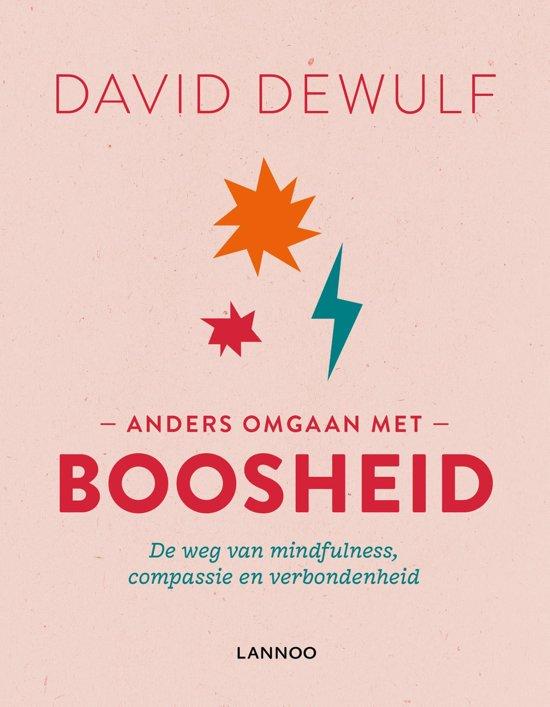 Boek cover Anders omgaan met boosheid van David Dewulf (Hardcover)