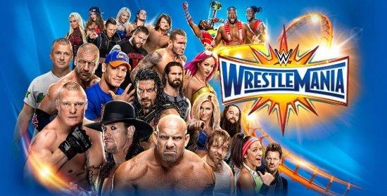 Thumbnail van een extra afbeelding van het spel Stoere bokszak van WrestleMania. Boksbal + handschoenen.