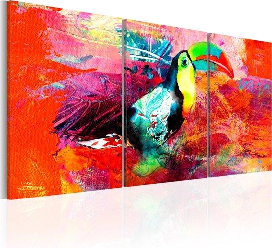 Schilderij - Kleurrijke Toekan , 3 luik