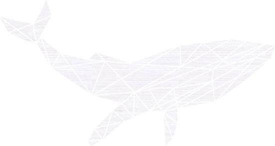 Walvis Geometrisch Vlak Hout 110 x 59 cm White wash - Wanddecoratie