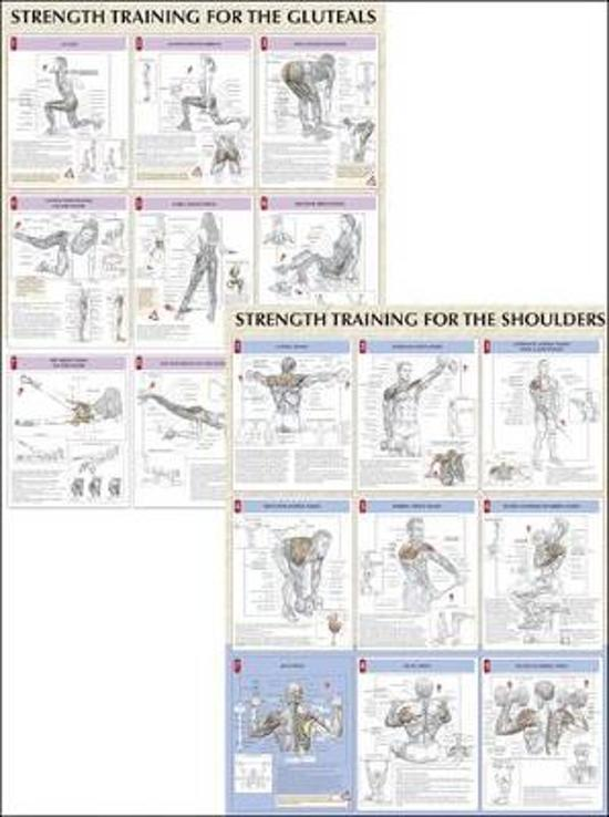 bol.com | Strength Training Anatomy Poster Series, Frédéric Delavier ...