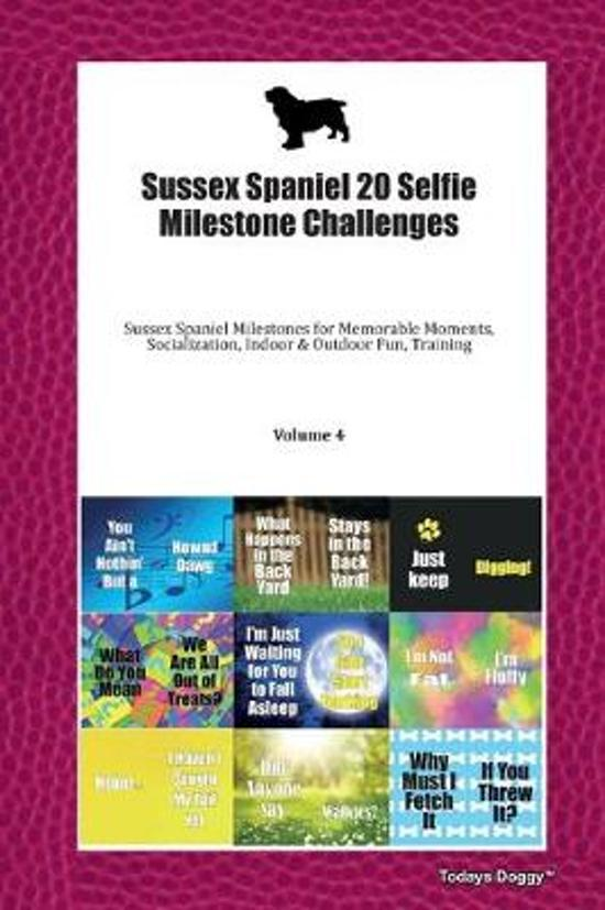 Sussex Spaniel 20 Selfie Milestone Challenges: Sussex Spaniel Milestones for Memorable Moments, Socialization, Indoor & Outdoor Fun, Training Volume 4