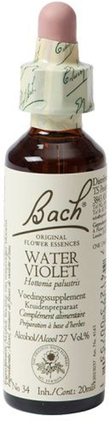 Water Violet/Waterviolier Bach