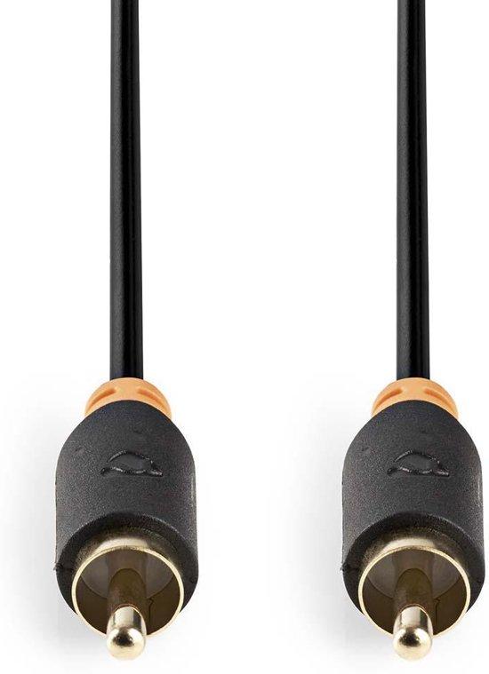 Nedis Digitale Audiokabel RCA 2 Meter Grijs