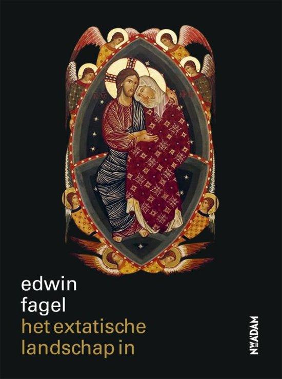 Het extatische landschap in - Edwin Fagel pdf epub