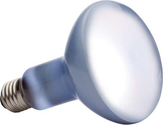 Daglicht Basking Spot Lamp  150W