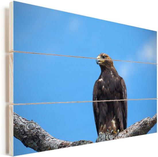 Steenarend hoog in een boom Vurenhout met planken 60x40 cm - Foto print op Hout (Wanddecoratie)