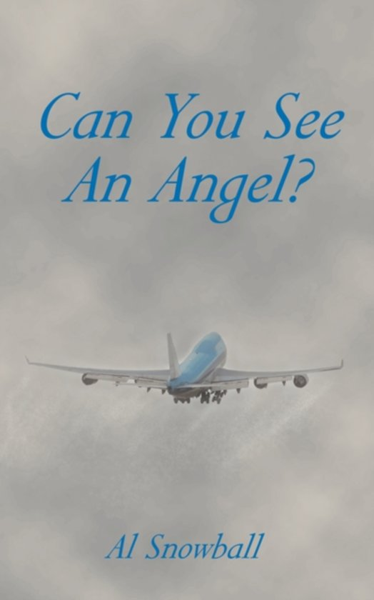 Can You See An Angel?