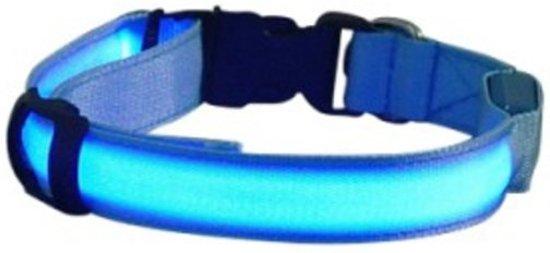 LED honden halsband - Blauw XL