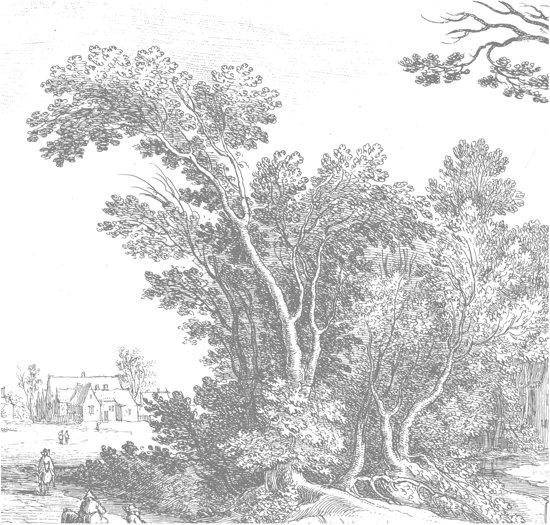 Engraved Landscape, fotobehang van KEK Amsterdam, WP-321, 6 baans behang
