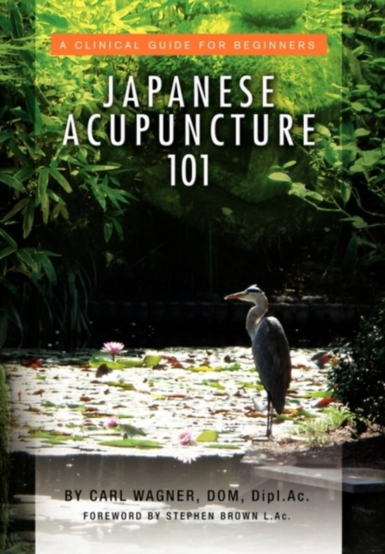 Japanese Acupuncture 101