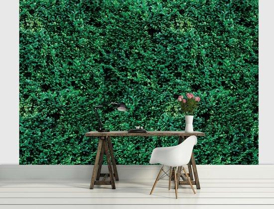 Green Photomural, wallcovering