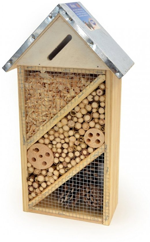 Insectenhuis - Alvin