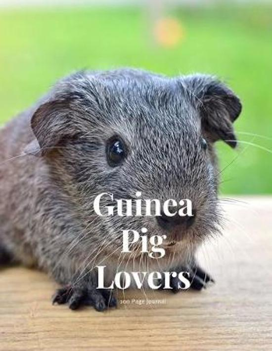 Guinea Pig Lovers 100 page Journal: Large notebook journal with 3 yearly calendar pages for 2019, 2020 and 2021 Makes an excellent gift idea for birth