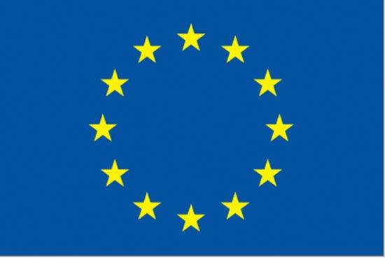 Afbeeldingsresultaat voor vlag europese unie