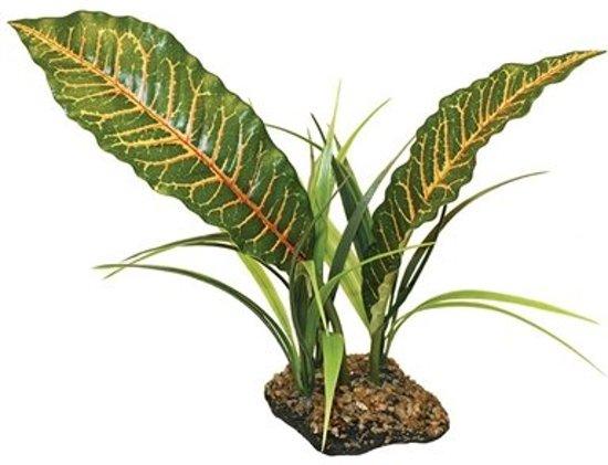 Komodo tropical canopy 31 cm