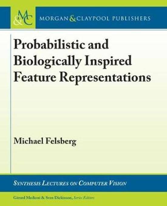 Probabilistic and Biologically Inspired Feature Representations