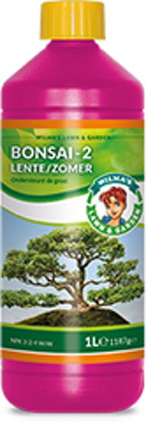 Wilma Bonsai-2 1 ltr