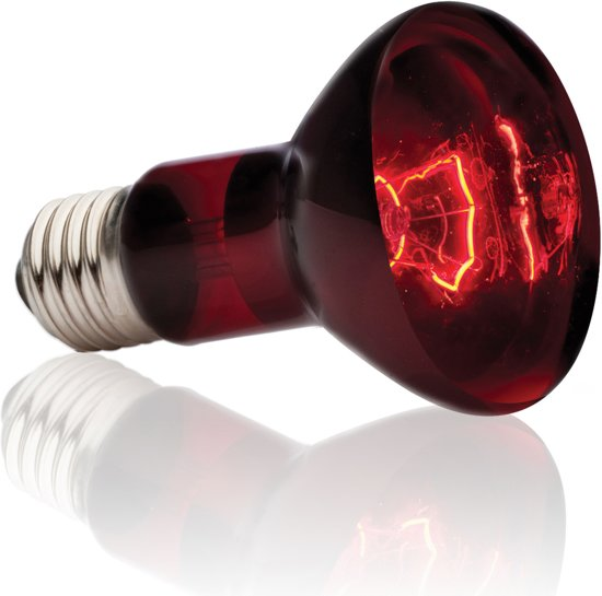Heat Glo Infrarood 75W/R20