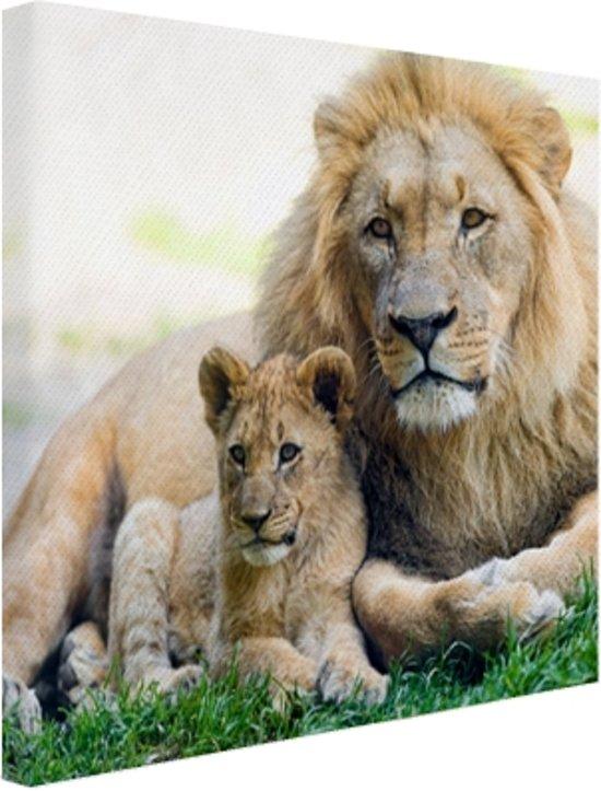 Vader en leeuwenwelp Canvas 80x60 cm - Foto print op Canvas schilderij (Wanddecoratie)