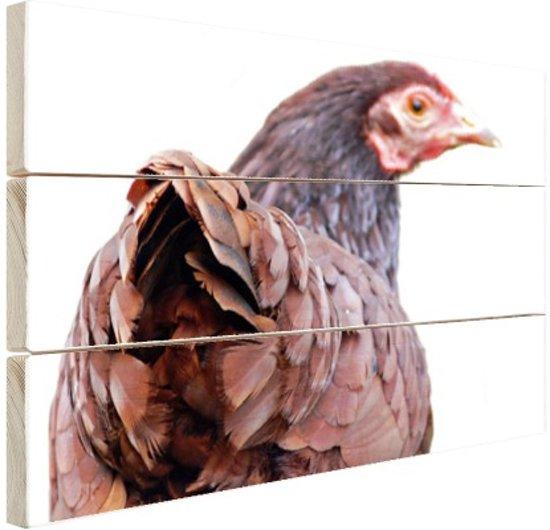 FotoCadeau.nl - Achteraanzicht kip Hout 120x80 cm - Foto print op Hout (Wanddecoratie)