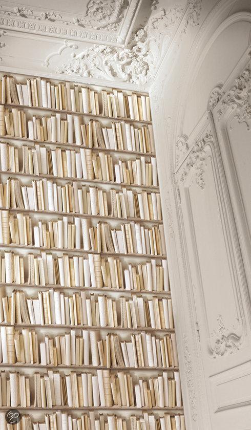 Dutch wallcoverings vliesbehang boekenkast beige for Wat is vliesbehang
