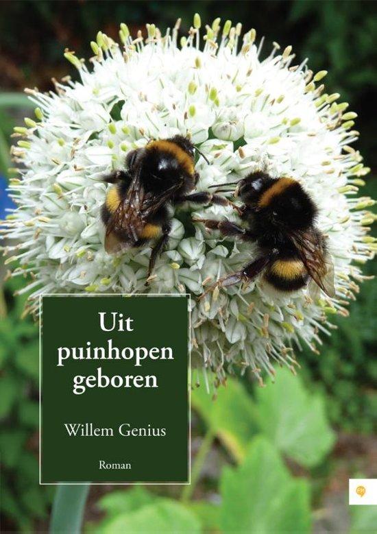 Cover van het boek 'Uit Puinhopen Geboren'