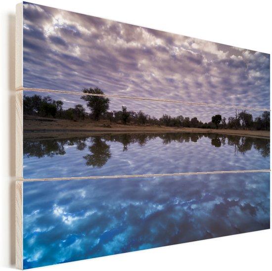 Waterpoel bij Limpopo in Zuid-Afrika Vurenhout met planken 90x60 cm - Foto print op Hout (Wanddecoratie)