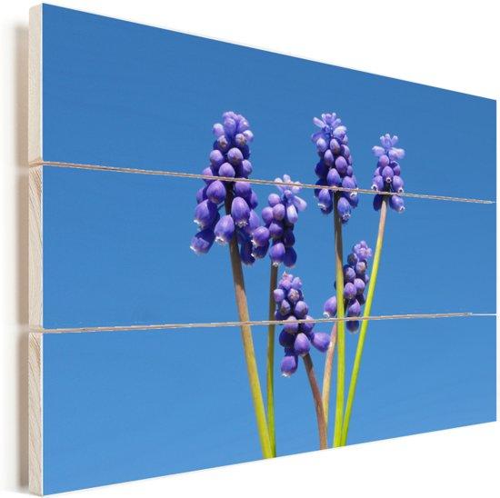 Druivenhyacinten en een heldere blauwe hemelachtergrond Vurenhout met planken 160x120 cm - Foto print op Hout (Wanddecoratie) XXL / Groot formaat!