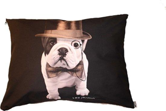 Hondenkussen teo dandy 53x60 cm