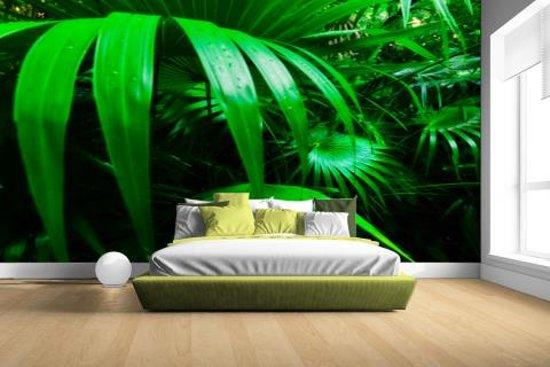 Palmbladeren in de jungle Fotobehang 380x265