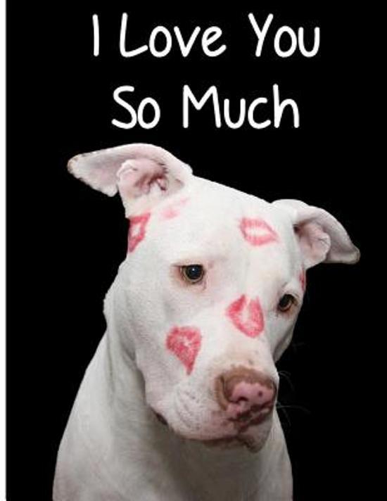 Bolcom I Love You So Much 9781543044690 Love U2 Journal Boeken