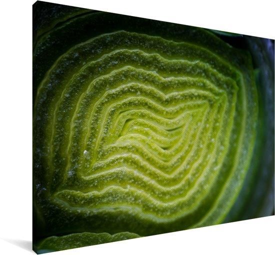 Een ingezoomd beeld van een plak groene prei Canvas 120x80 cm - Foto print op Canvas schilderij (Wanddecoratie woonkamer / slaapkamer)
